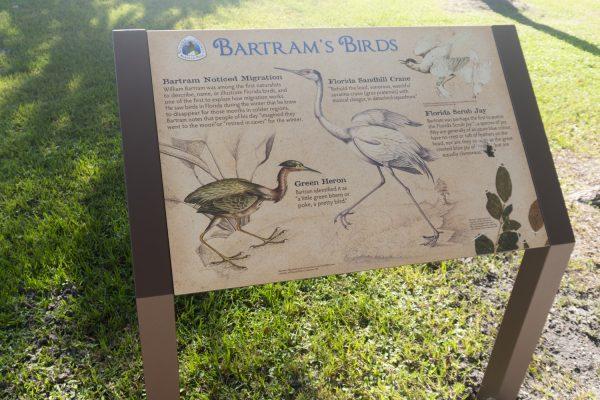Bartram's birds in Florida