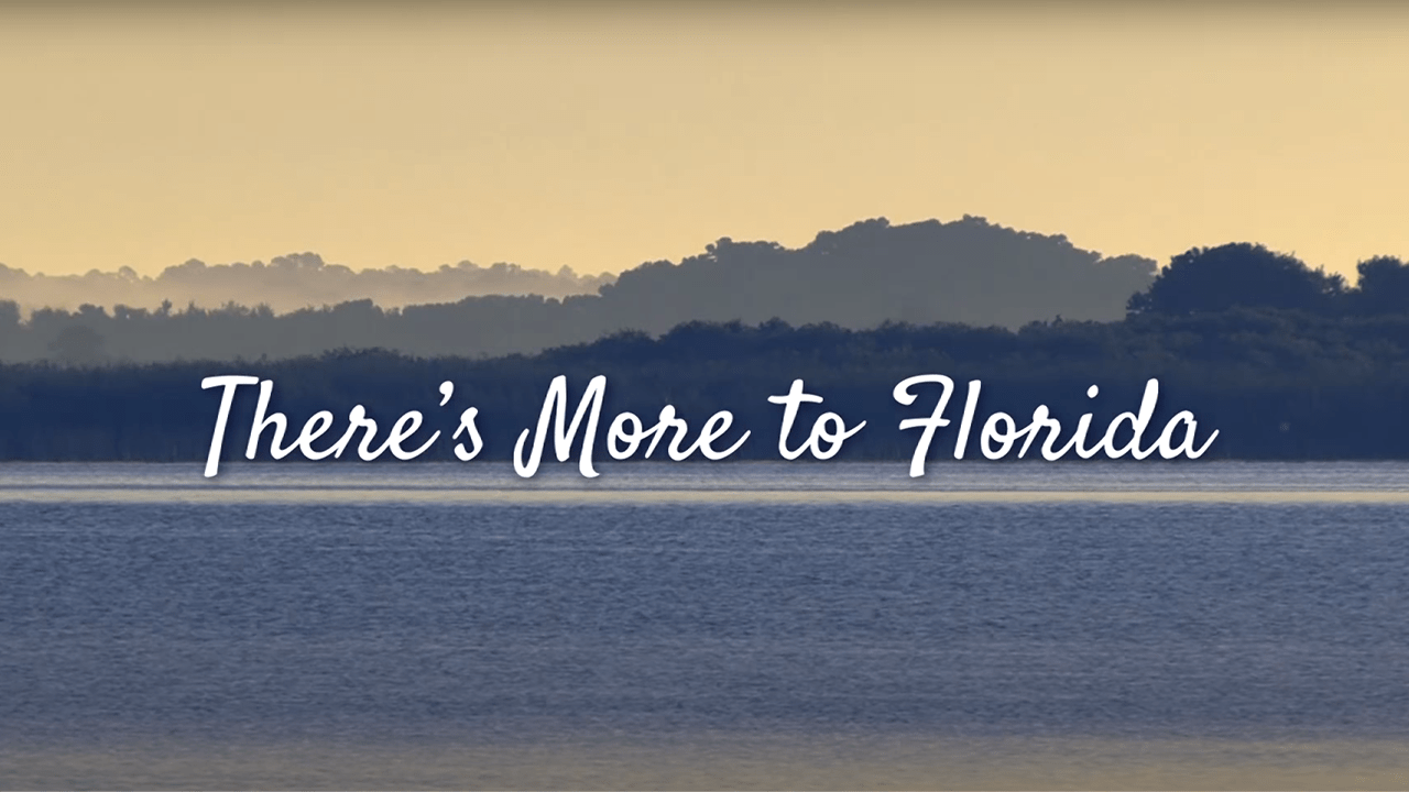 Image of the St. Johns River at sunrise with the text that reads There's More to Florida